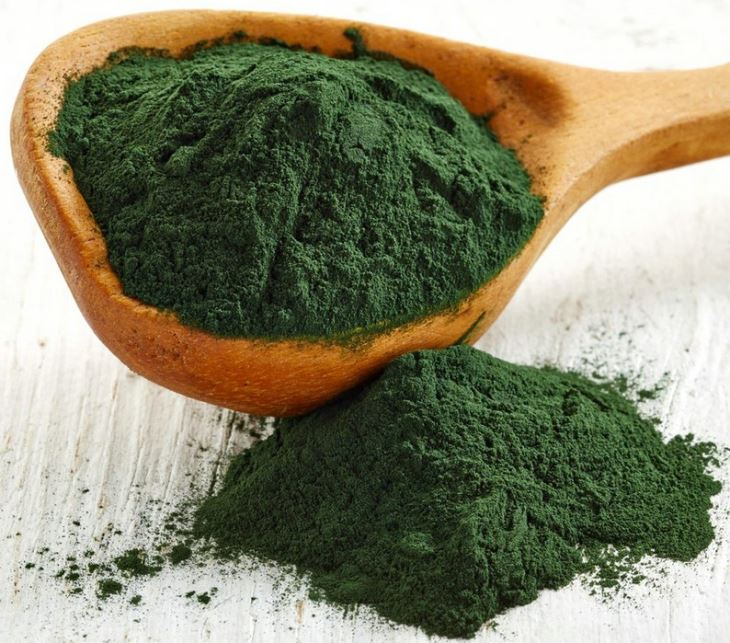 zöld alga imunex rólunk