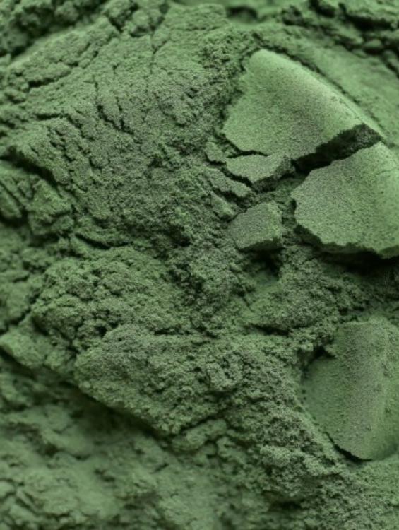 A zöld algák rendkívüli egészségügyi előnyei