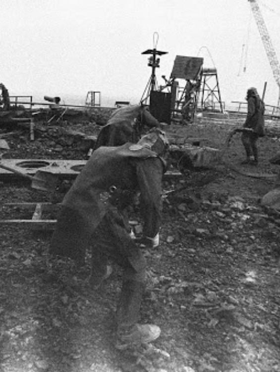 Az algák segítettek a csernobili áldozatoknak