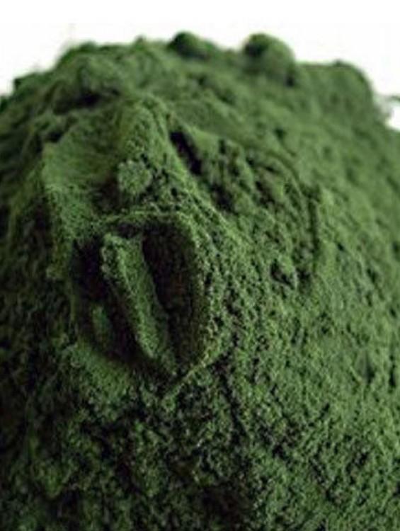 Zöld algákhatékonyságatöbb millió állaton