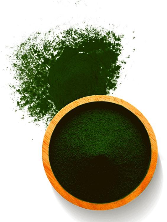 Vaspótlás a zöld algákkal
